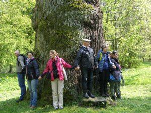 Społeczni edukatorzy bioróżnorodności w Turwi 2017 1