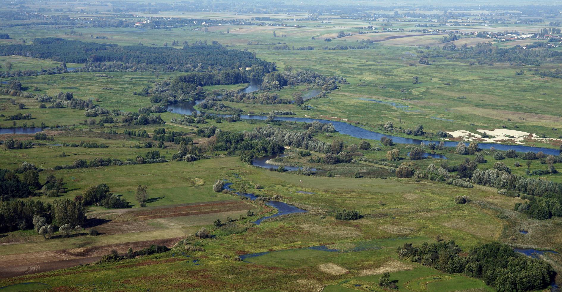 Wydmy w rejonie Lądkowskiego Borku. fot. Marek Chwistek