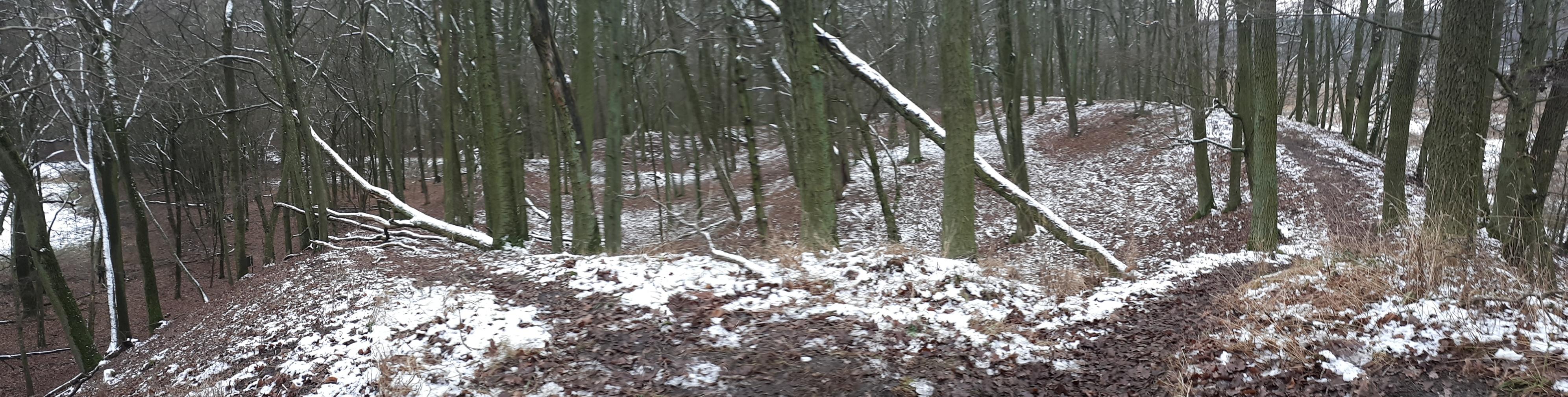 Widoczne nasyp grodziska pośród lasu zimowego